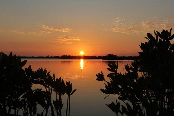 little palm sunset