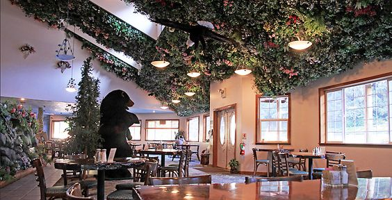 Myster of Trees Forest Cafe 2.jpg