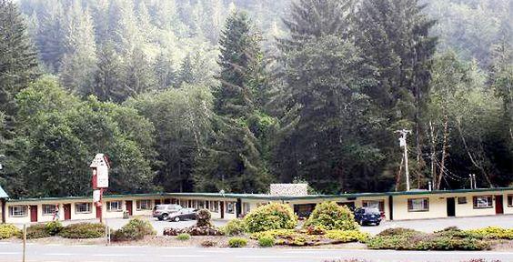 Mystery of Trees Motel Trees.jpg