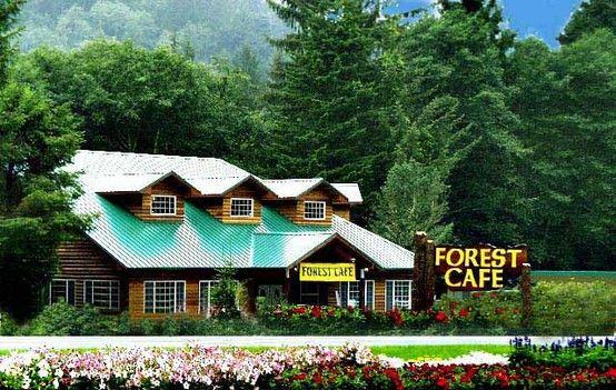 Trees of Mystery Forest Cafe.jpg