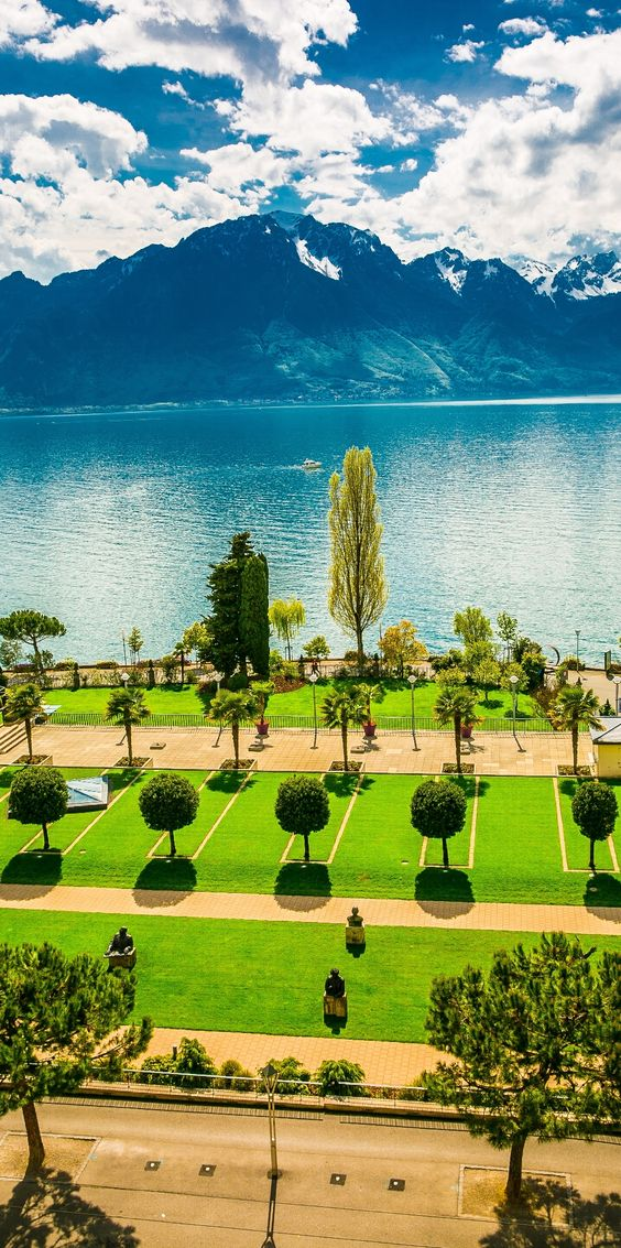 Montreux cypresses.jpg