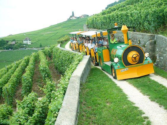 Montruex Lavaux Express.jpg